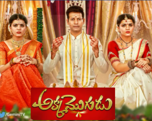Akka Mogudu Daily Serial – E510 – 14th July