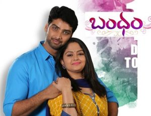 Bandham Telugu Serial – E491 – 5th Aug