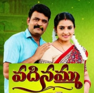 Vadinamma Daily Serial – E302 – 10th Aug