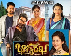Bhagya Rekha Telugu Serial – E222 – 8th April