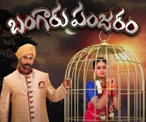 Bangaaru Panjaram Daily Serial – E151 – 7th Aug