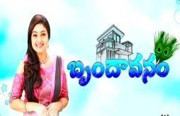 Brindavanam New Serial – E18 – 15th july